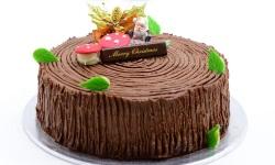 Xmasroundlog cake web