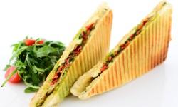 Mediterranean panini web