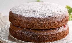 S2.chocolate sponge cake web