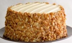 1.carrot walnut cake web