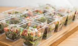 han3609 saladshots web