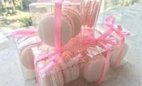 2pc Macaron Door Gift_Annabella Patisserie Catering from Annabella Patisserie