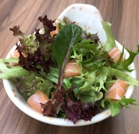 Mixed Salmon Salad from Beppu Menkan Restaurant