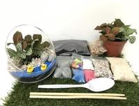 Virtual Angled Open Terrarium  Workshop from Epic Workshops