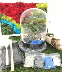 Virtual Bell Dome Terrarium  Workshop from Epic Workshops