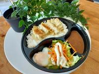 Gyoza Rice Bento from Lazy Japanese Catering